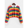 Chic Rainbow Striped Print Long Sleeve Button Front Loose Fit Cropped Polo Shirt